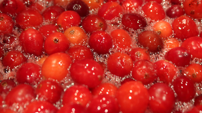 Spiced Cranberry Orange Compote