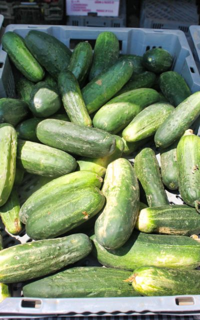TBT Recipe: Chile Lime Cucumbers